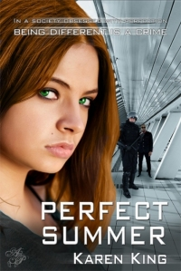PerfectSummer book cover